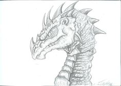 Old dragons head by Ruth-Tay on DeviantArt
