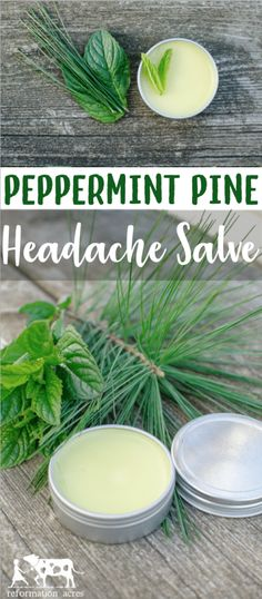 Massage a dab of Peppermint Pine Headache Salve on your temples when you start to feel a headache. Breathe deeply and feel your headache melt away. Massage a dab of Peppermint Pine Headache Salve on y Headache Remedies, Herbal Remedies, Health Remedies, Cold Remedies, Bloating Remedies, Natural Home Remedies, Natural Healing, Natural Oil, Natural Beauty