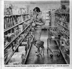 Audrey Hepburn Takes Her Baby Deer Grocery Shopping