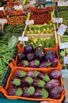 The open air market in downtown Padua explodes with color. Absolutely gorgeous produce.