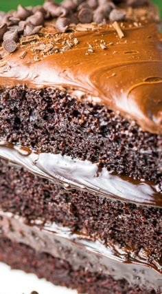 Death by Chocolate Cake ~ This sinfully decadent dessert begins with three luscious layers of chocolate cake. Each layer is slathered in rich chocolate buttercream, then enrobed in a layer of hot fudge. Finally, the entire cake is coated with chocolate shavings, then sprinkled with mini chocolate chips.