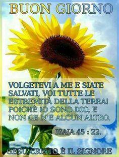 Buongiorno con Dio immagini belle con i fiori (3)