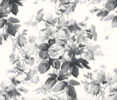 wallpaper NUT