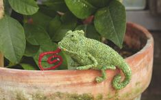 "Chameleon ~ Free Knitting Pattern ~ ( Scroll Down after ""Armadillo Pattern""( the Title ""Chameleon pattern"" is very small)"