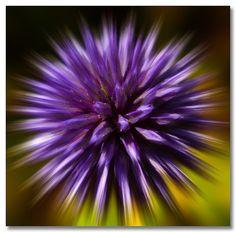 Explosion | Flickr - Photo Sharing!