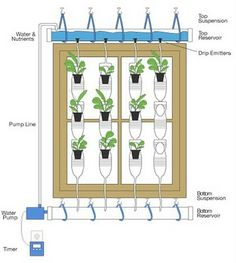 plastic bottle diagram