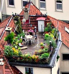 Rooftop Garden -- do this on the back deck - for veggies and privacy.