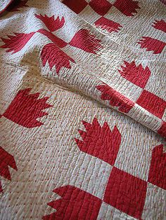Detail, antique vintage red and white bear paw quilt. Old Quilts, Antique Quilts, Barn Quilts, Vintage Quilts, Bear Paw Quilt, Two Color Quilts, Primitive Quilts, Red And White Quilts, 9 Patch Quilt