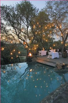 fairy lights and a pool