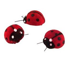 "Lady Bugs (Set of 12) Size: 0.6""L Decorate your garden themed party with a set of these adorable Lady Bugs! The sight of lady bugs is said to bring future luck in love, good weather, a financial windfall, and even the granting of wishes! Bring these charming creatures into your life without having to rummage through your garden, and you won't have to worry about them flying off either! Tidy and decorative, they'll make the perfect accent to any nature themed reception or party, fitting…"
