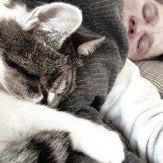 Während meine Katze Lissi längst auf den Beinen ist, kuschelt sich mein Kater Joschi gerne noch zu mir ins Bett. Zwischen 7 und 8 Uhr hat er dann genug…
