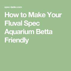 How to Make Your Fluval Spec Aquarium Betta Friendly