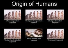 Correction: what SOME Christians think happened without evolution. Most of us regard evolution as a valid method of creation. Anti Religion, Les Religions, E Mc2, Biologist, Charles Darwin, Thats The Way, Memes, Christianity, Faith