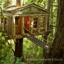 Located near Issaquah, WA. Pete and Judy Nelson own and run a bed and breakfast. All the treehouses here can be rented out nightly to experi...
