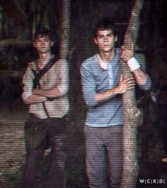 Newt and Thomas <--- Or, Newt looking like he's living the thug life and Thomas hugging a tree.
