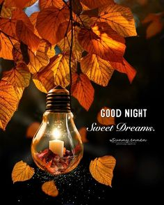 Gud Night Quotes, Good Night Love Quotes, Good Night Moon, Good Night Image, Good Morning Good Night, Good Morning Images, Good Night Greetings, Good Night Wishes, Good Night Sweet Dreams