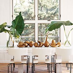 white-wood-table-modern-chairs - How to Decorate with White - Coastal Living Pine Dining Table, A Table, Dining Decor, Outdoor Dining, Vase With Branches, White Wood Table, Small Guest Rooms, Recessed Medicine Cabinet, Estilo Tropical