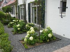 moderne voortuin ~ www.rolandvanboxmeer.nl