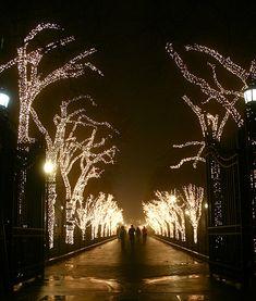 College walk at Columbia University...imagine studying in nite walk..