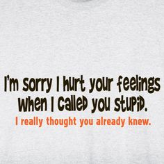 I'M SORRY I HURT YOUR FEELINGS T-SHIRT