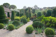 Euphorbia wulfenii ~ Sissinghurst, Kent