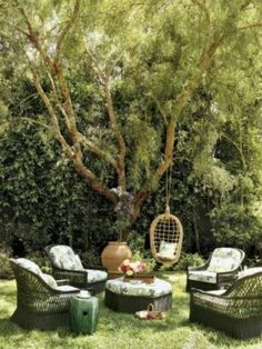 what I want to create in the backyard