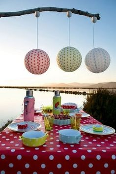 polka dot party out by the lake.