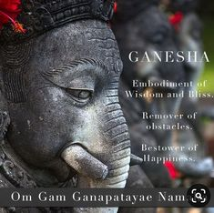 Discover The Depths of Yoga In An Untouched Paradise! Experience A Remarkable, Elegant & Unforgettable Yoga Retreat In This Amazing Sanctuary in Ubud. Yoga Mantras, Hindu Mantras, Yoga Quotes, Yoga Meditation, Vedic Mantras, Art Quotes, Lord Ganesha, Shri Ganesh, Namaste