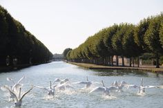 Enjoy the weekend in France on Canal du Nivernais with Le Boat