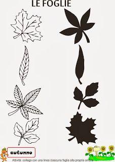 A Scuola con Poldo: Schede didattiche sull'autunno Autumn Crafts, Autumn Art, Autumn Activities For Kids, Preschool Activities, Earth For Kids, Diy For Kids, Crafts For Kids, Preschool Arts And Crafts, Printable Preschool Worksheets