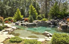 Natural pond design swimming pool with water features Natural Swimming Ponds, Natural Pond, Swimming Pools, Swimming Pool Landscaping, Natural Garden, Pond Design, Modern Garden Design, Beautiful Pools, Gorgeous Gorgeous