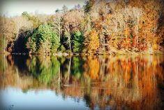 View of the fall leaves reflecting over the lake outside your cabin at Fairy Stone State Park, Va Park Trails, Bike Trails, Hiking Trails, Outdoor Activities, Fun Activities, Leaves Changing Color, Picnic Spot, Trail Guide, Fall Is Here