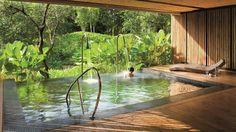 Bath & forest