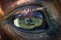 Selfie by Tiago Pazini