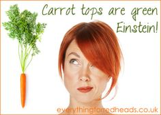 Carrot tops are green! #redheads