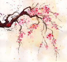 japanese cherry blossom watercolor painting - Google Search