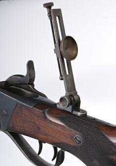 Sharps tang sight.