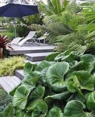 Image result for nz landscape design