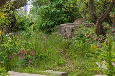 The Chatsworth Garden at the RHS Chelsea Flower Show 2015 / RHS Gardening
