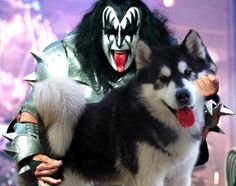Who says rock stars can't rock out with dogs?! Thanks to the blog Bass Dogs, the world could imagine big time bassists tickling dogs rather than their instruments. Gene Simmons and this pup have identical facial markings, making them a much better combo than the KISS rocker and his bass.