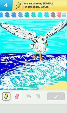 seagull - draw something