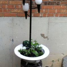 Bottom of my feeding light station I used an old bathroom sink as a pot