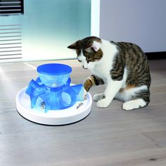 Channel your cat's curious nature into something positive with this convenient tunnel feeder. Fill the container with your cat's favorite treats, replace the lid and let the rewards tumble down into six different tunnels for your pet to retrieve.