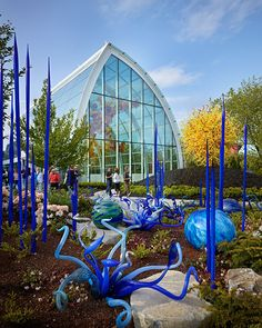 Chihuly Garden & Glass - Schuchart