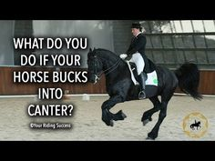 (24) What Do You Do If Your Horse Bucks Going In To Canter?  - Dressage Mastery TV Ep207 - YouTube