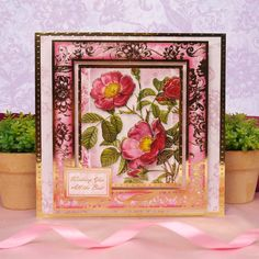 Radiant Roses   Hunkydory Crafts