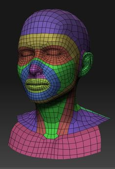 Image result for 3d face topology
