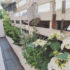 Endlich blüht es wieder auf unserem Balkon. Nach einem Tag Arbeit kann er sich wieder richtig sehen lassen. Habt ihr heute auch eure Zeit… Interiordesign, Plants, Garden, Balcony, Garten, Planters, Gardening, Outdoor, Home Landscaping
