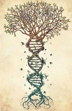 DNA tree of life tattoo - Google Search
