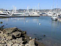 Where to Eat and Drink in Sausalito, CA | Serious Eats